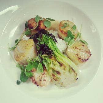 Scallops- Coconut Jasmine Rice- Grilled Bok Choy- Coconut Thai Curry Sauce