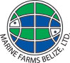 Marine Farms Belize, Ltd.